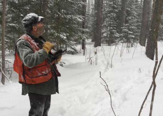 DNR Service Foresters