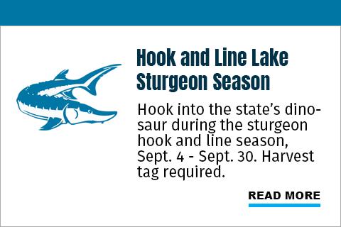 Hook and Line Lake Sturgeon Season