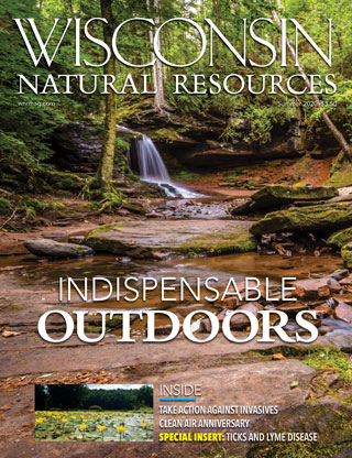 Wisconsin Natural Resources magazine Summer 2020 Issue