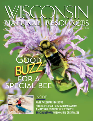 Cover of the summer 2021 issue of the Wisconsin Natural Resources magazine.