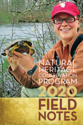 DNR biologist Carly Lapin holds a wood turtle on cover of 2020 Field Notes