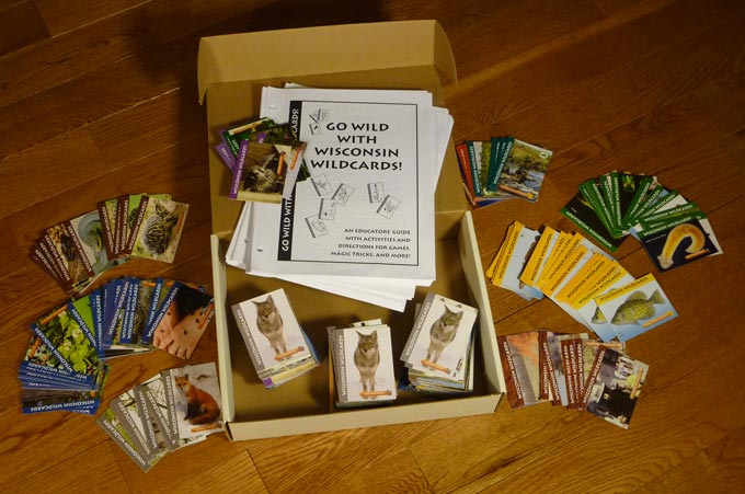 Go Wild With Wisconsin Wildcards! kit for educators.