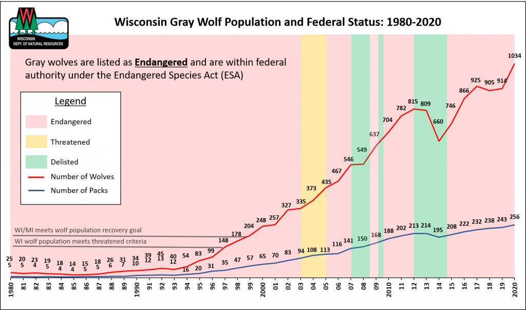Graph showing the wolf population and federal conservation status from 1980-2020.