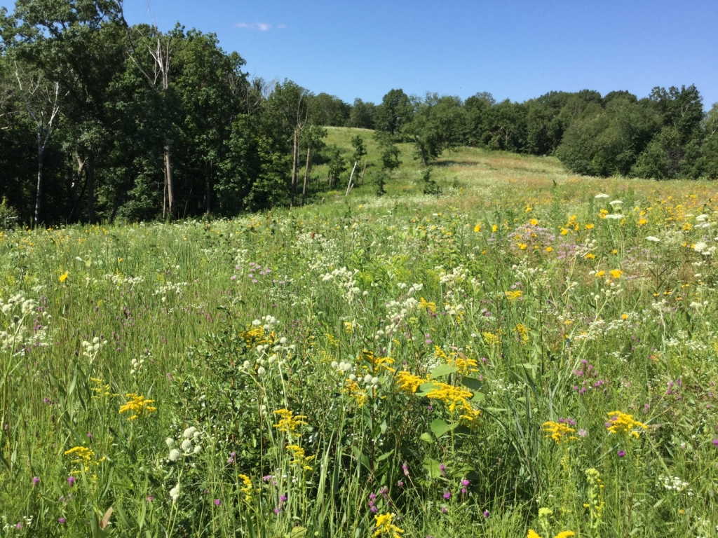 Landowner Incentive Program project