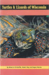 Turtles and Lizards Field Guide